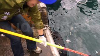 海漂垃圾包圍台灣 潛水教練、漁民撈出5噸廢棄物
