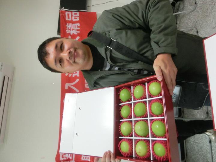 棗子農民鄭明輝種出高品質的雪蜜,獲得高樹蜜棗節蜜棗評鑑冠軍。記者蕭雅娟╱攝影