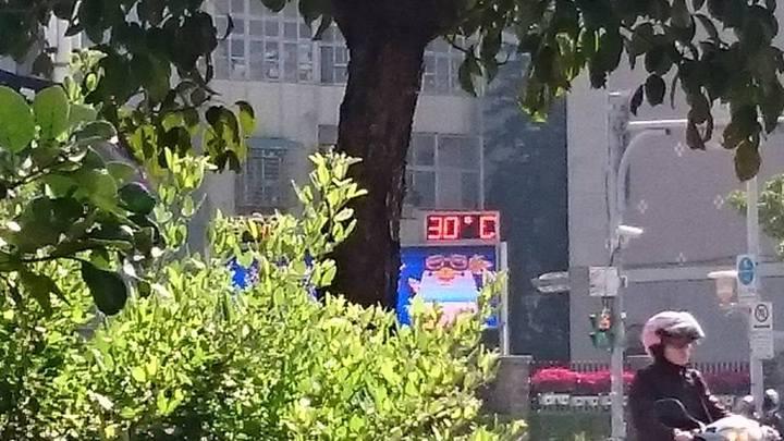 去年1月24日,台北市羅斯福路旁的溫度計,顯示氣溫攝氏30度,宛如夏天。記者王彩鸝/攝影