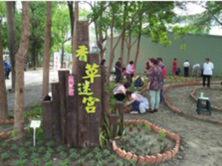 台南市南區金華里在里長和社區志工努力下,精心打造「漫舞花巷弄」、「香草迷宮」等景點。圖/環保署提供