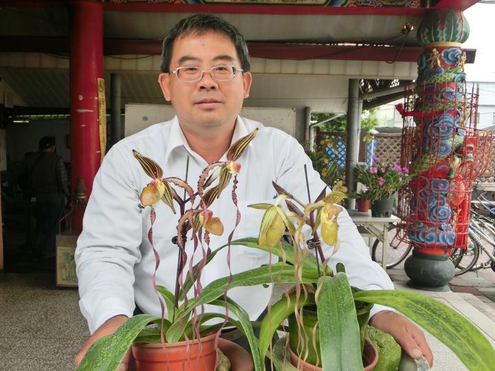 屏北社大蘭花老師龔泰文,耗時20年培育出罕見的白變體仙帝蘭(右盆),增加仙帝蘭花色。記者蕭雅娟/攝影