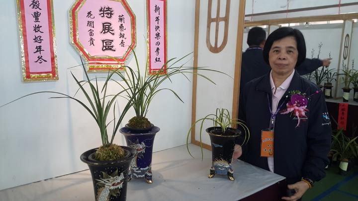 宜蘭縣國蘭協會理事長阮雪卿展出她種植的珍貴蘭花。記者廖雅欣/攝影