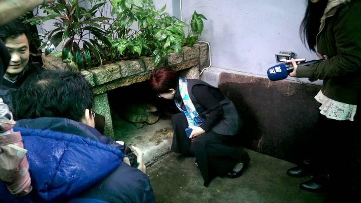 洪秀柱表示她將於四月底左右遷出官邸,還在煩惱寵物「龜龜」以後該怎麼辦。