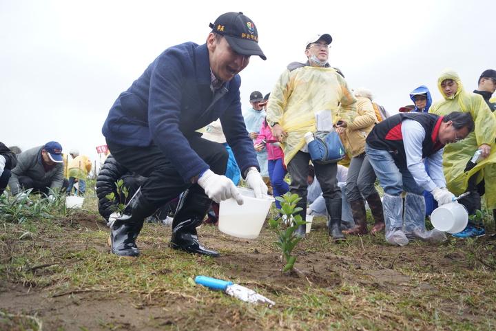 朱立倫使用鐵鏟挖坑、覆土,並澆水,成功種下1棵厚葉石斑木,他也強調海岸造林重要性,有賴民眾一同參與。記者曾健祐/攝影