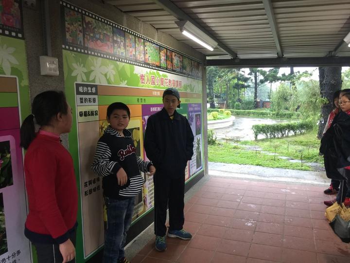 樹人國小學生為來訪新營國小學生介紹蘭花。記者吳政修/攝影