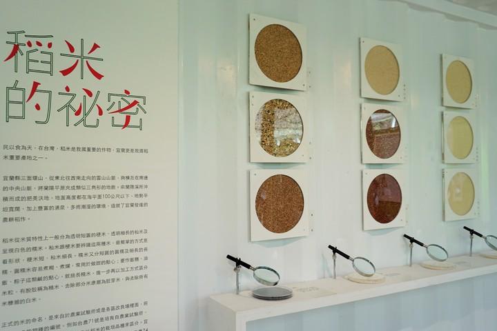 視覺體驗區呈現宜蘭各地米種,民眾可用放大鏡仔細看米粒的大小、色澤和飽和度。記者吳佩旻/攝影