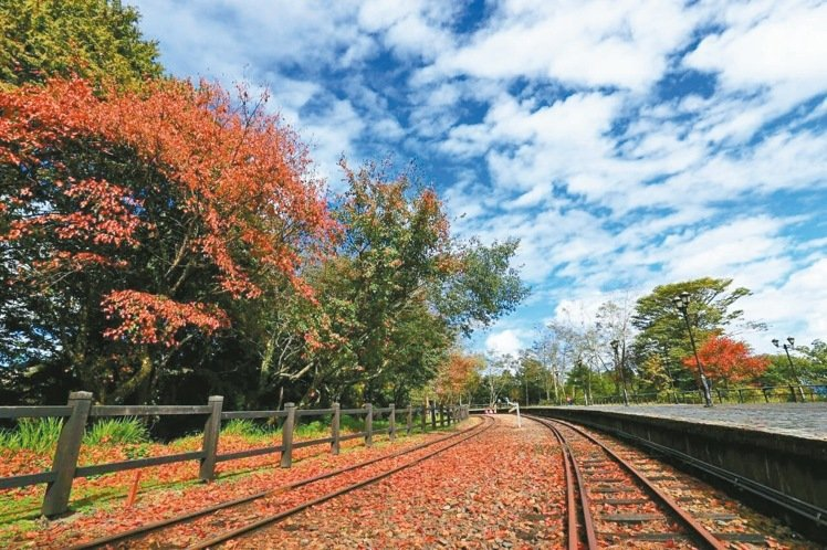 阿里山森鐵祝山支線沿線的對高岳車站,每年僅元旦有列車停靠。 圖/嘉義林管處提供
