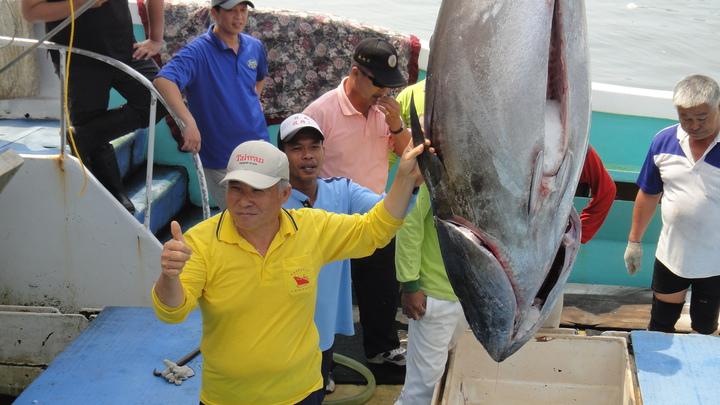 東港籍漁船欣昇慶126號捕獲的屏東「第一鮪」。記者蔣繼平/攝影