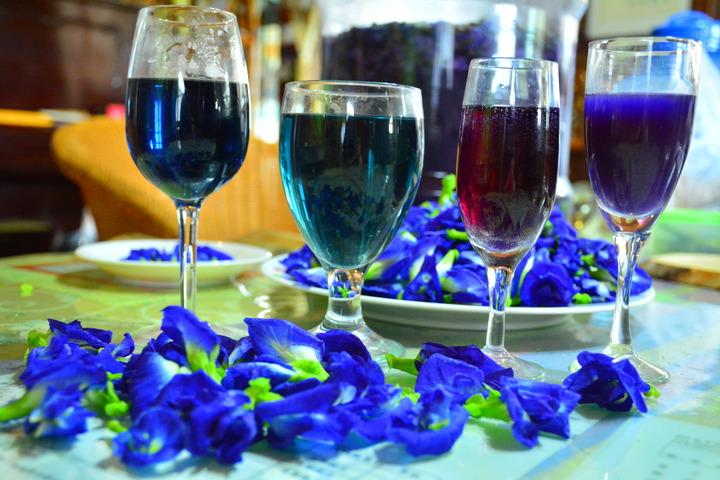 蝶豆花從單純萃取是藍色,遇酸會變紫色,像是經過釀造發酵的時間不同,也會呈現不同層次的紫色。記者吳淑玲/攝影