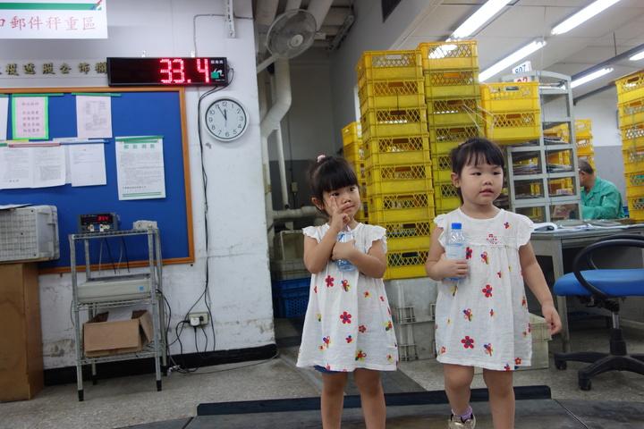 雙胞胎站上郵務士的郵件秤重區。記者劉星君/攝影