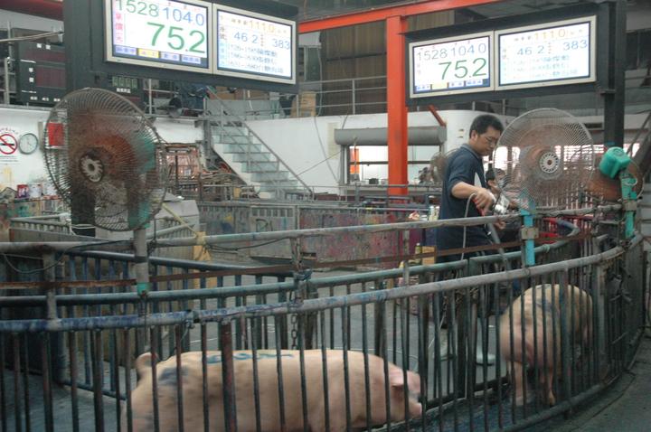 颱風天肉品市場的交易價偏高,引起關切,不過肉品市場認為言只是短暫性,請大家放心,記者蔡維斌/攝影