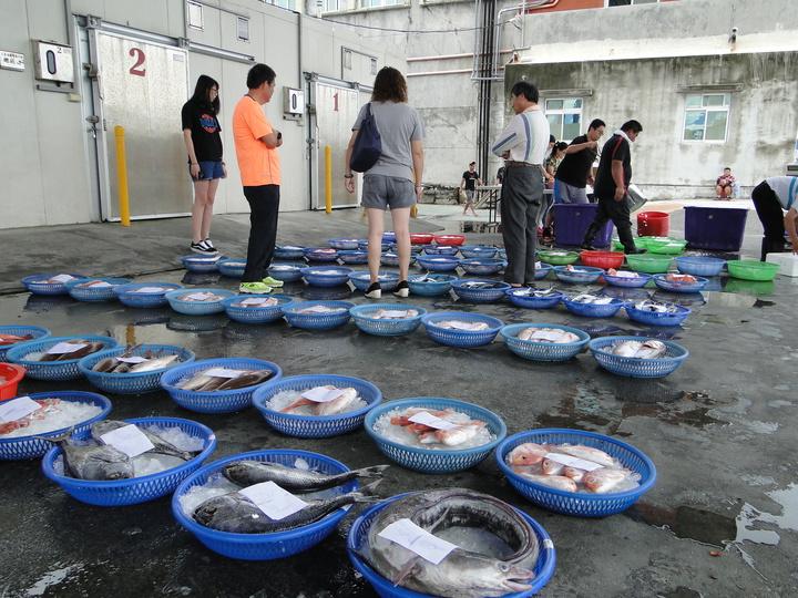 花蓮區漁會所屬的觀光魚市拍賣場,各種漁獲「列隊」待價而沽。記者范振和/攝影