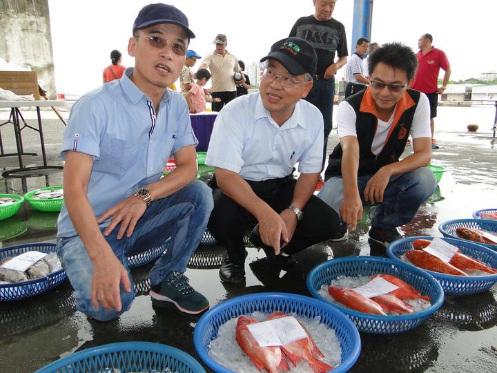 花蓮區漁會理事長簡光臺(左一)、總幹事 洪銘芳(右一)陪同縣府農業處長羅文龍(中)觀賞新鮮漁獲。記者范振和/攝影