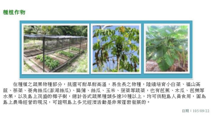 海巡署官網經略太平島成果的網頁,太平島農場經營現況,現在以農作實物為主。翻攝海巡署官網