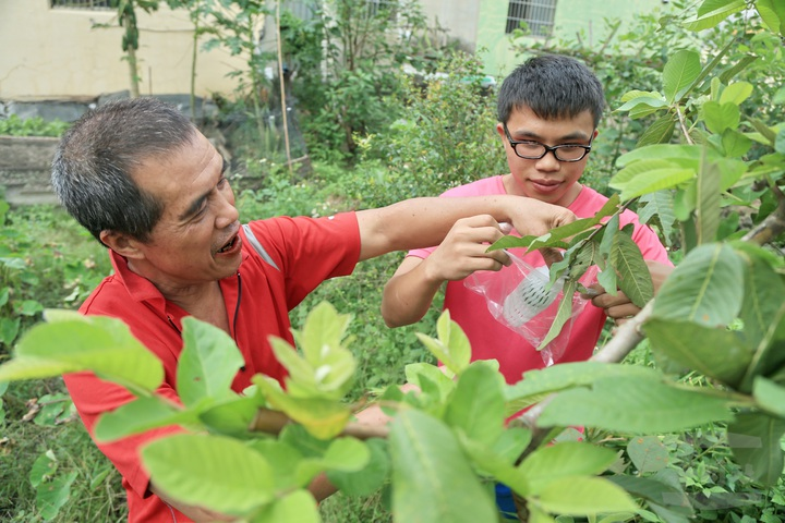 魏伯彥在屋前空地種菜自給自足,魏家兄弟工作、求學閒暇之餘也會到菜田幫忙,家人聚在一起工作。圖片來源:軍聞社