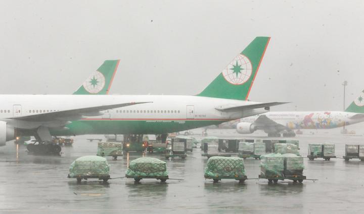 長榮航空在梅姬颱風時,雖符合飛航標準,但照飛仍造成乘客恐慌。 記者鄭超文/攝影