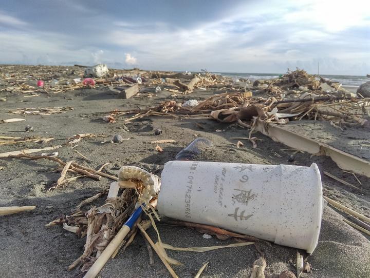高雄市阿公店溪出海口到處佈滿垃圾。圖/荒野保護協會提供