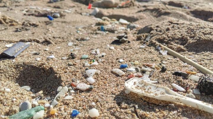 屏東縣滿州沙灘布滿微小塑膠碎片。圖/荒野保護協會提供