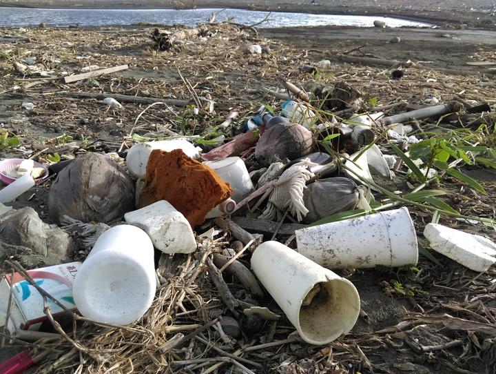 靠近河川出海口的海灘充滿民生飲食廢棄物。圖/荒野保護協會提供