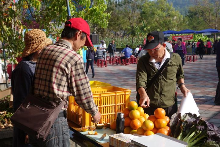 南投市中興首區公園一早就出現一票農民忙著擺攤販售農作,全為了助弱從事有機農務。記者賴香珊/攝影