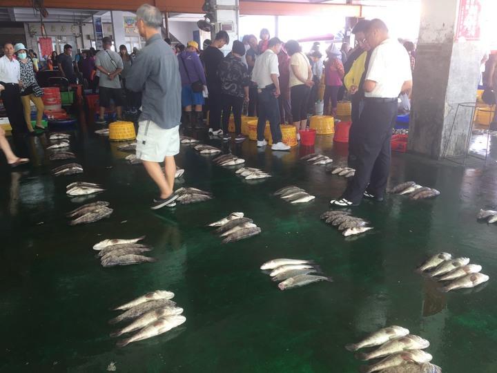 雖然漁蝦價格齊漲,但這幾天到東石魚市場選購魚貨的遊客還是很多。記者黃煌權/攝影