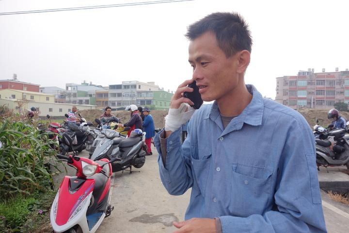 大寮農民蕭清翔一早電話接不停,不少民眾看到網路訊息紛紛來到大寮採高麗菜。記者劉星君/攝影