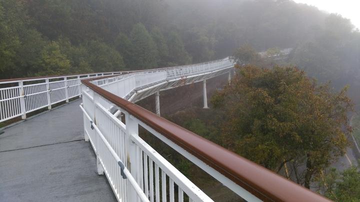 穿梭在樹林之間的高架步道全長1.2公里,有著騰雲駕霧之感。圖/南投縣政府提供