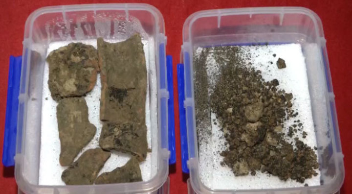 考古人員發現的小麥碳化顆粒。(央視新聞)