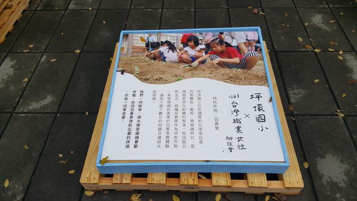 台灣好基金會認養苗栗縣11所國小,今天在銅鑼鄉中興國小辦「神農一日學校」成果展,呈現各校校田的成果。記者胡蓬生/攝影