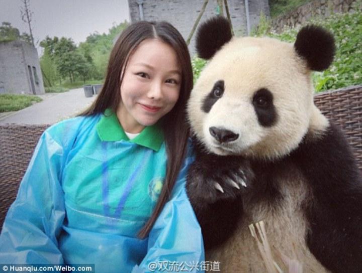 熊貓與遊客自拍擺頭舉手裝可愛。(圖/英國每日郵報)