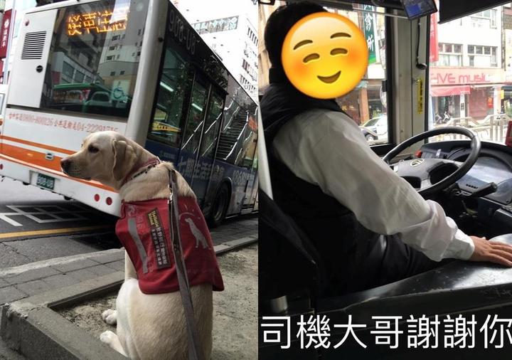 陳姓小姐帶導盲犬Betty搭上台中市12路公車,王姓司機熱情宣導40分鐘:「車上有個貴客導盲犬,不要干擾。」圖/當Betty遇見Bagel粉絲團提供