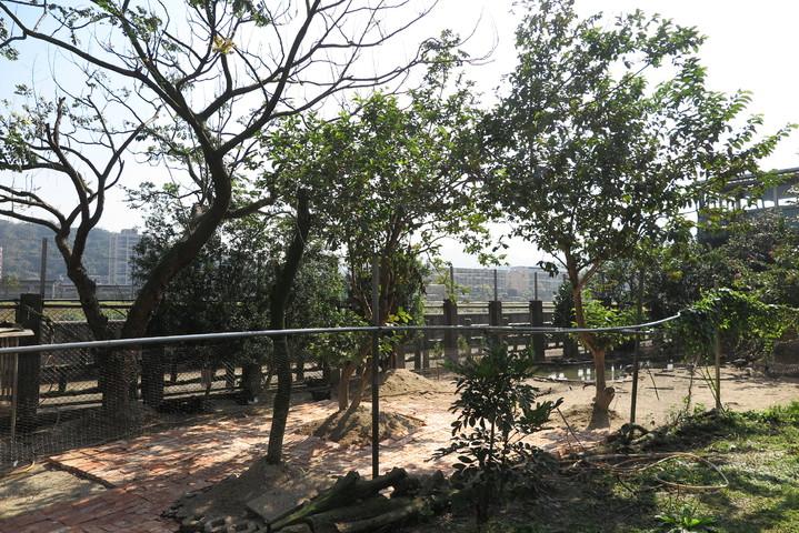 百福社區一處民宅遭檢舉私設養禽場,環境不符合規範,遭開罰3萬元限期改善。記者林孟潔/攝影