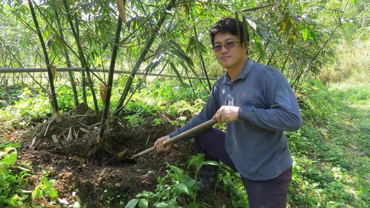 36歲農夫鄭聿程在苗栗縣銅鑼鄉新雞隆種綠竹筍,一年四季都可以生產。記者范榮達/攝影
