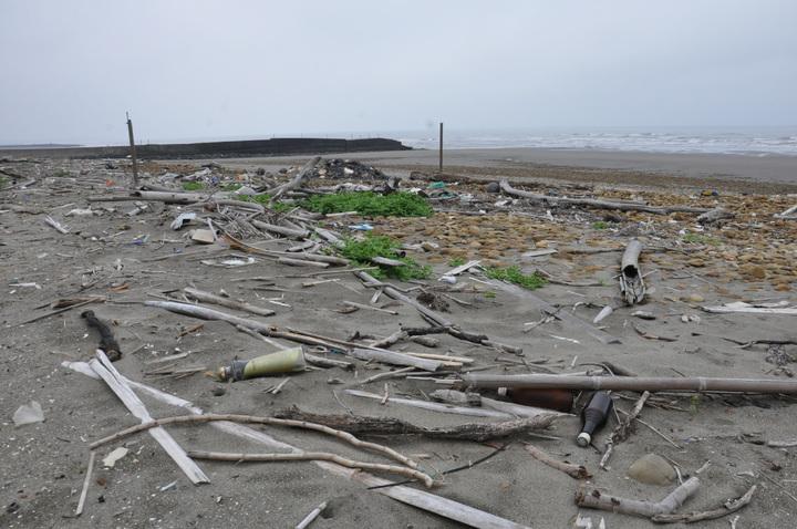 原崎頂海水浴場沙灘堆積大量垃圾與雜木,地方盼清理,別讓外人看笑話。記者張裕珍/攝影