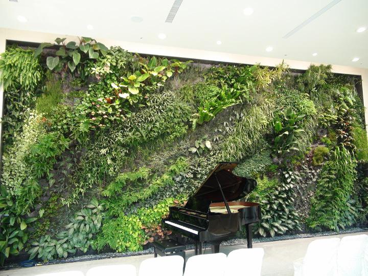 垂直花園發明家法國綠先生 Patrick Blanc設計大幅垂直花園,一座大鋼架放在前面彷彿是玩具。記者謝梅芬/攝影