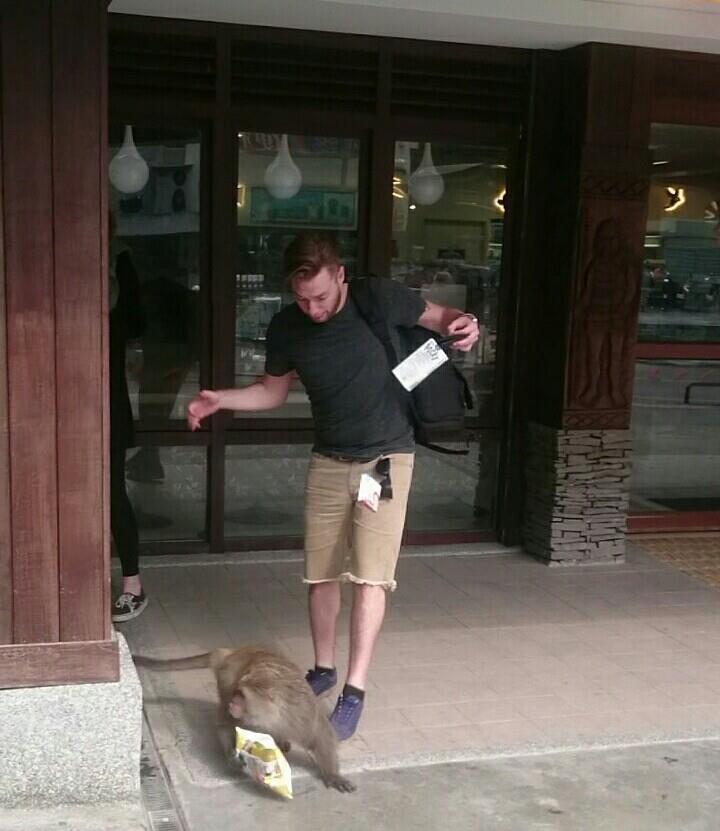 外籍遊客才從便利商店走出,猴王就搶下男子手中的食物。圖/賴姓民眾提供