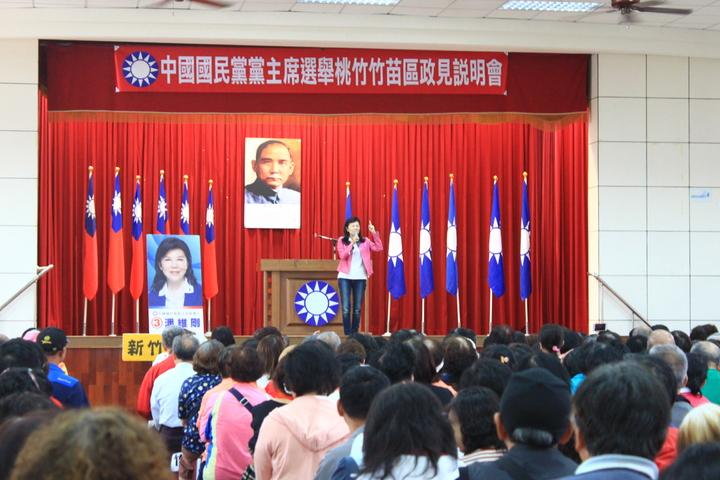 候選人潘維剛說,國民黨要有反省和覺醒的能力,要有清楚的政策。記者郭政芬/攝影