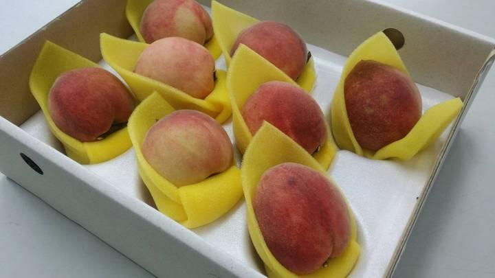 今年嘉義縣熱帶水蜜桃減產,產期延後,但一樣香甜美味。記者謝恩得/攝影