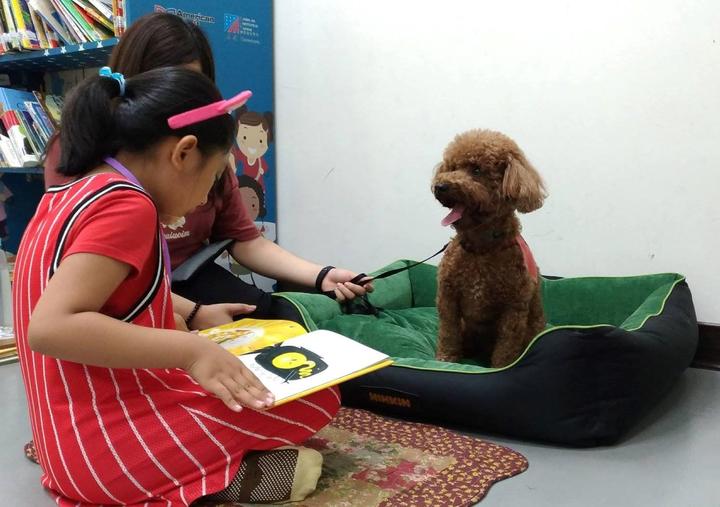 為了唸故事給狗狗聽,學童能提升專注力及口語表達能力。圖/教育部提供