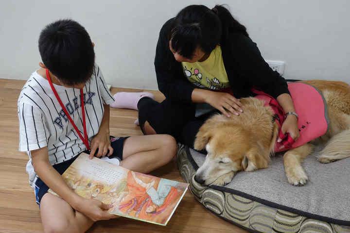 透過唸故事給狗狗聽的過程能夠增加學童口語表達的信心。圖/教育部提供