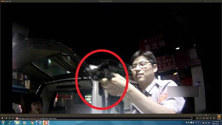台中市水湳派出所所長林俊昌與警員張信中,以水、鹽酥雞誘捕未果,最後翻開後車箱墊子,順利救出小黑貓。記者林佩均/翻攝