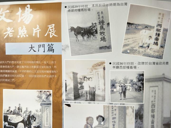 畜產試驗所老照片展,見證畜產試驗所發展點,還有罕見的種馬牧場。記者謝進盛/攝影