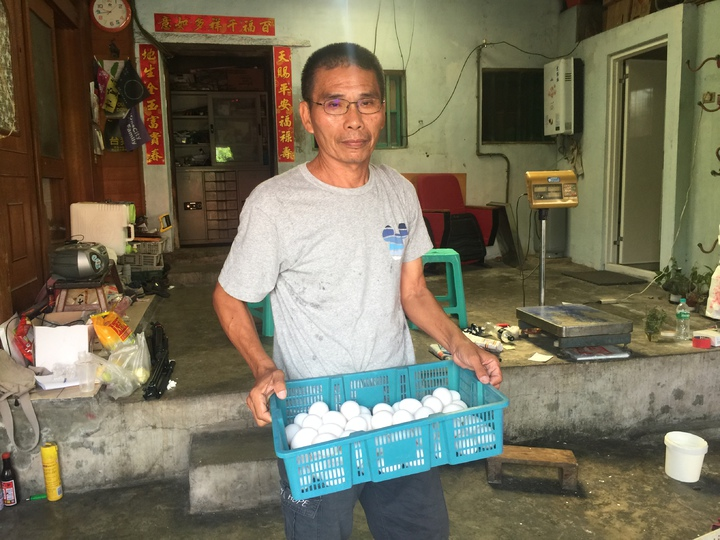 雞蛋價格跌到10多年來最低。記者吳政修/攝影