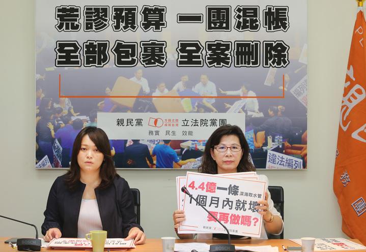 親民黨團立委陳怡潔(左)與陳秀霞(右)今早共同舉行「荒謬預算、一團混帳;全部包裹、全案刪除」記者會,批評前瞻計畫預算。記者陳柏亨/攝影