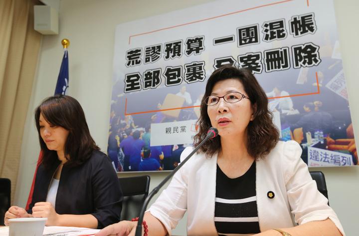親民黨立委陳怡潔(左)與陳秀霞舉行記者會批評前瞻計畫預算。記者陳柏亨/攝影