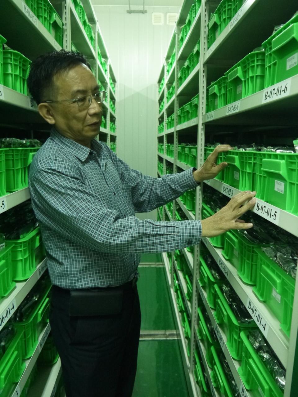 亞蔬的種原庫內現存有6萬多種種子,會以每年1千多種的速度輪種,維持數量同時也調查種子特性,包括果實、大小等,再建置檔案進資料庫,以利後續研究及育種工作。記者洪欣慈/攝影
