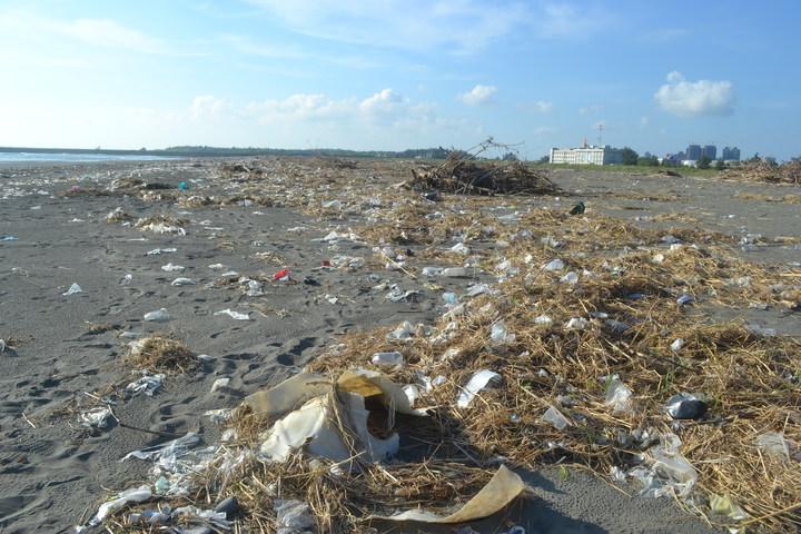 颱風過後,台南市南區鯤鯓海岸布滿垃圾,美麗沙灘變色。記者鄭惠仁/攝影