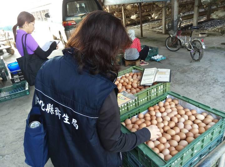 彰化縣衛生局人員在欣德牧場查驗雞蛋。圖/彰化衛生局提供
