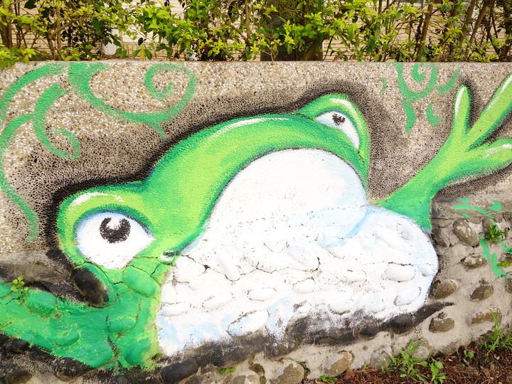 寶山鄉的青蛙復育很成功,更是生態指標的象徵。記者郭政芬/攝影