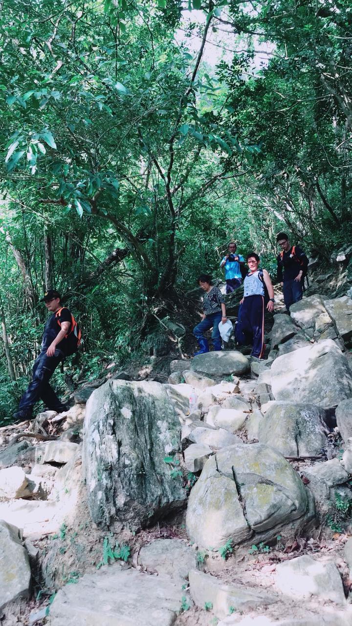 來自四川的王姓遊客,在失聯21小時,直到今天中午才在大禮部落尋獲,搜救人員協助下山。圖/消防局提供